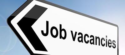 Job & Vacancies